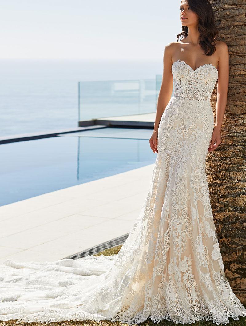 Pronovias-Desi-Bridal-Gown